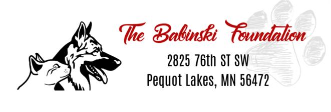 The Babinski Foundation