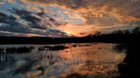 Gallery Image chiarella_sunset_(002).jpg