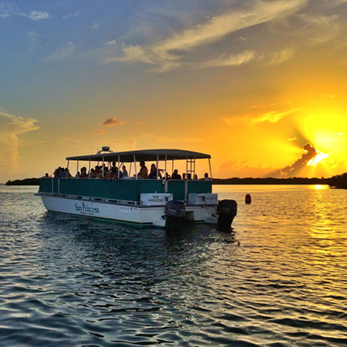 Christmas On Sunset 2019 Christmas Eve Sunset Dolphin & Wildlife Cruise   Dec 24, 2019