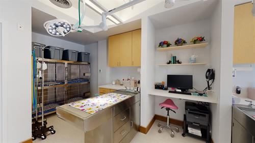 Gallery Image Five-Parks-Animal-Hospital-01182021_164018.jpg