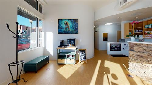 Gallery Image Five-Parks-Animal-Hospital-Living-Room.jpg