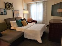 "Sofa Beds have 5"" memory foam mattress"