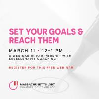 MALGBTCC Webinar: Set Your Goals and Reach Them - With Rach SebellShavit
