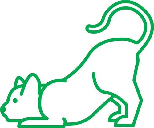 Gallery Image Green_Cat.jpg