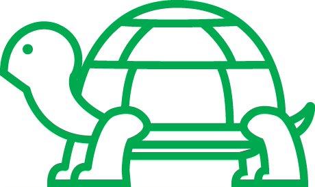 Gallery Image Green_Turtle.jpg