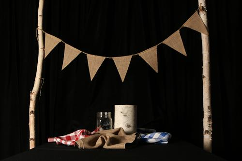 Decor items: burlap bunting, gingham table runners, birch bark vases, burlap runner, and mason jar