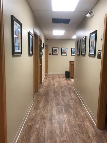Our old location was tired and cramped; updated and spacious, our patient reviews have reflected their approval!