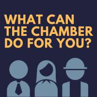 Chamber 101 | November Edition