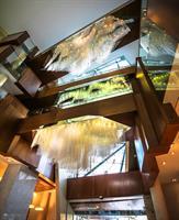 Gallery Image 4_Lobby_Crystal_Waterfall.jpg