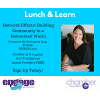 Lunch & Learn - Network Effects: Building a Community in a Networked World