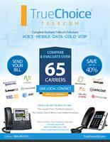 TrueChoice Flyer 1