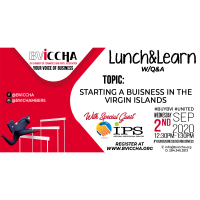 Lunch&Learn: Starting a Business in the VI