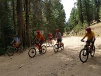 Scouts enjoying the cool pines of Camp Lawton north of Tucson during Summer Camp