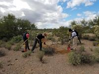 Building trails at Double V Scout Ranch west of Tucson