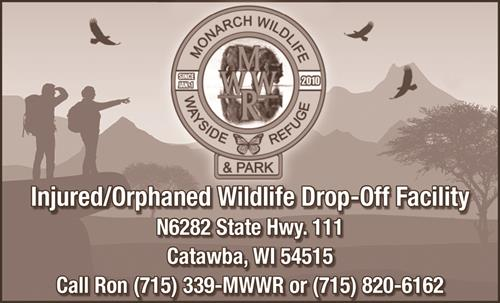 Price County WI. #1 and only Injured/Orphaned Wildlife Drop-off - Rescue & Transport Facility, the Monarch Wildlife Wayside Refuge & Park, Catawba, WI. 715-339-MWWR OR 715-820-6162