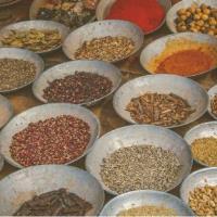 Ayurvedic Medicine: a time-honored form of natural medicine