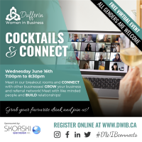 Dufferin Woman in Business Present: Virtual Cocktails and Connect