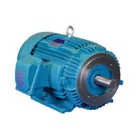 IEEE Motors: These motors meet and exceed IEEE Standard 841™-2009 for petroleum and chemical industry severe duty induction motors.