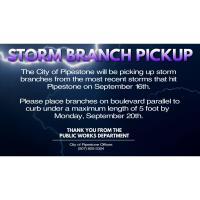 Storm Branch Pickup