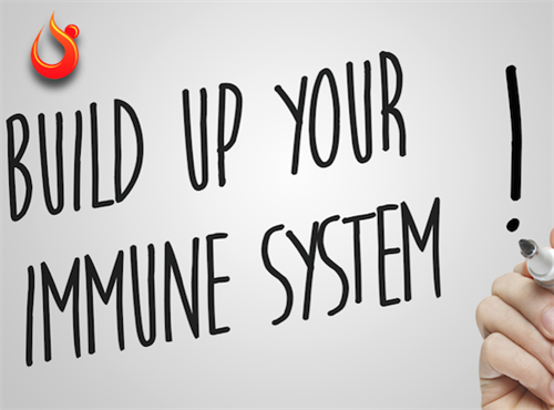 Gallery Image Build_your_immune.png
