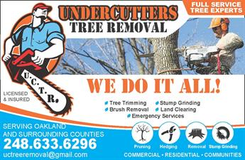 Undercutters Tree Removal