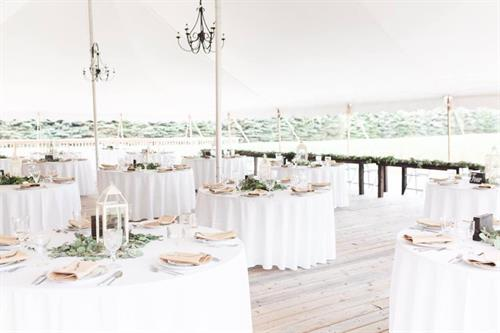 Perfect high-peak white tent for guest seating