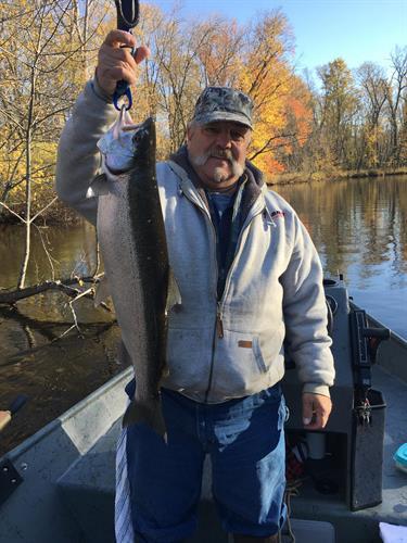Pere Marquette river steelhead