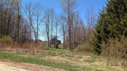 2.56 Acres S Tuttle Rd, Scottville, MI