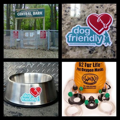 Central Bark Dog Park, Downtown dog friendly project, and pet oxygen masks donated to local fire departments