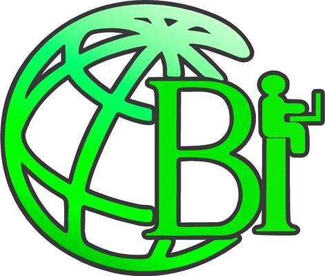 Own Your BI, LLC