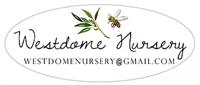 Westdome Nursery (Microgreens)