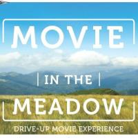 Movie in the Meadow- Drive in Movie