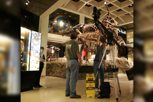 Filming b-roll at the Museum of Natural Science in Houston, TX