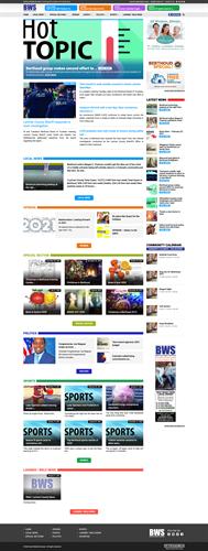Berthoud Surveyor Website Design & Hosting