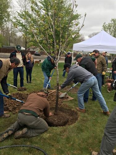 Arbor Day Celebration 2017