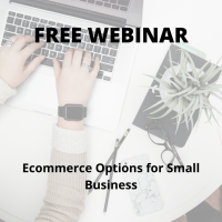 Ecommerce Options for Small Business