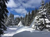 Tipis snowed in