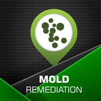 SERVPRO of Shrewsbury / Westborough Mold Remediation and Restoration. When a home suffers a water damage event, a mold infestation can quickly arise and spread throughout a home in 48-72 hours.