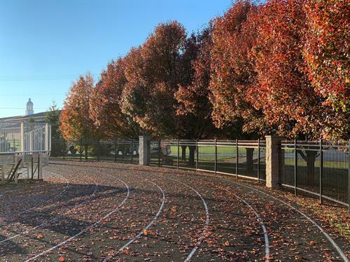 Black Colonial Universal Aluminum fence. Location: Western Brown Football Stadium