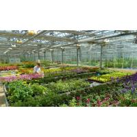 Independent Garden Centers at Risk