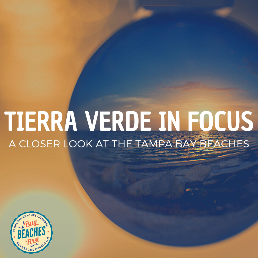 Tierra Verde in Focus