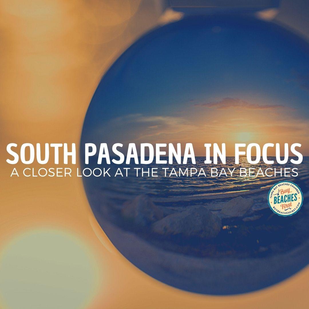 South Pasadena in Focus