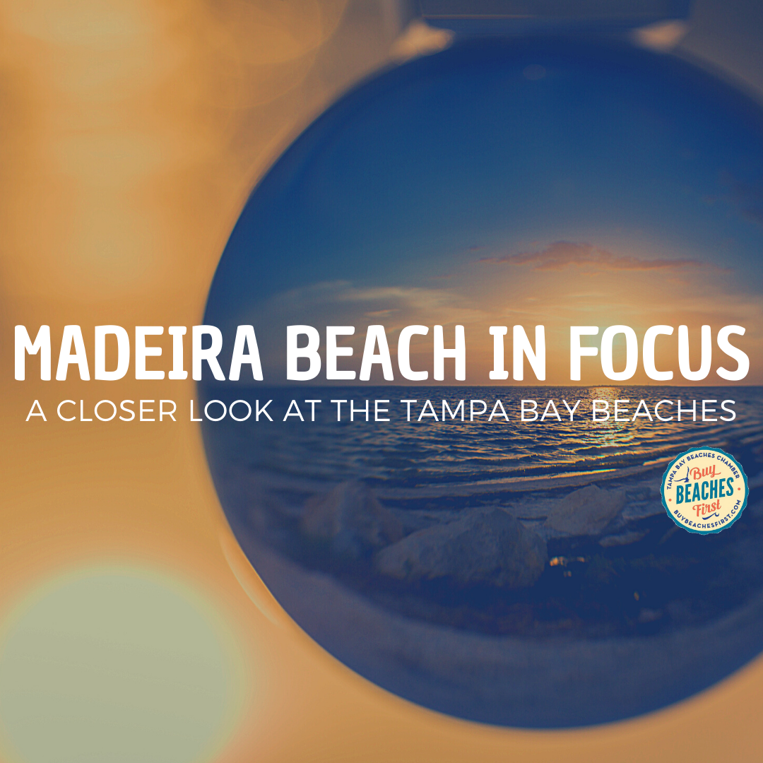 Madeira Beach in Focus