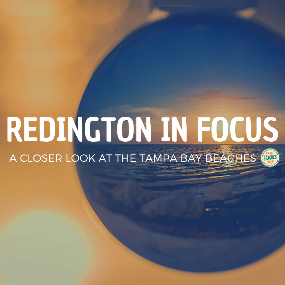 Redington in Focus