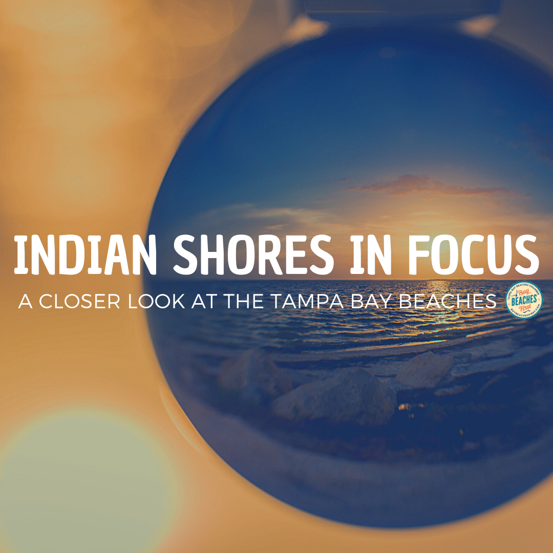 Indian Shores in Focus