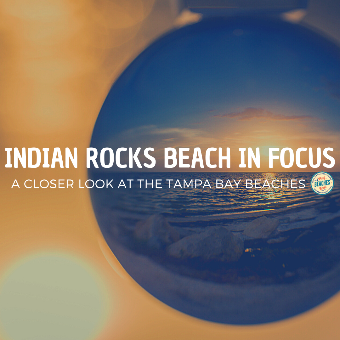 Indian Rocks Beach in Focus