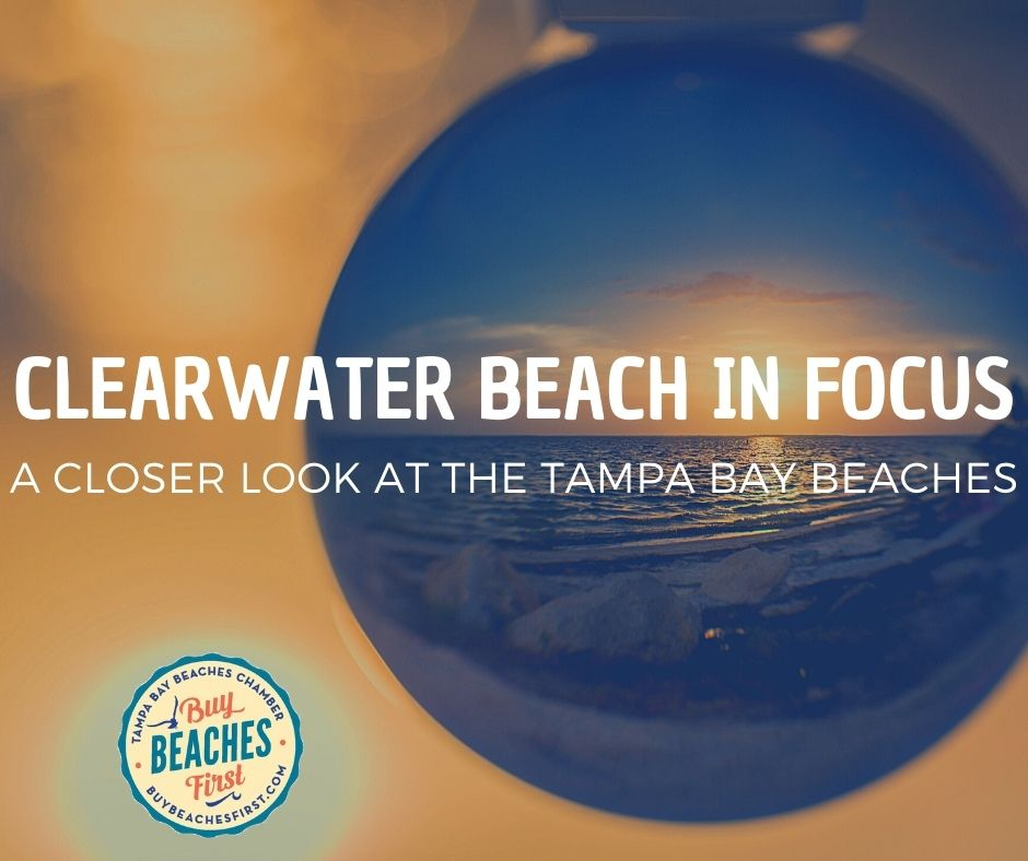 Image for Clearwater Beach in Focus