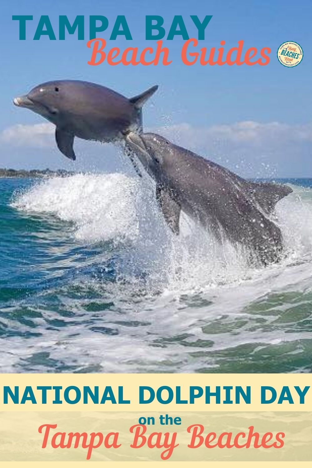 Image for 7 Ways to Celebrate National Dolphin Day on the Tampa Bay Beaches