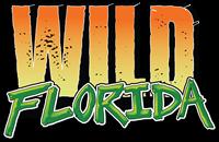10 Years of Wild Florida!
