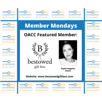 Member Mondays: Bestowed Gift Box
